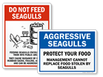 Do Not Feed Seagulls Signs