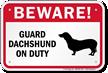 Beware! Guard Dachshund On Duty Guard Dog Sign