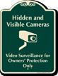 Hidden And Visible Cameras Video Surveillance Sign