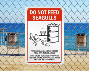 Do not feed seagulls sign