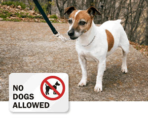 No Dogs Allowed Signs