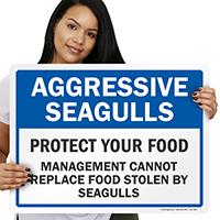Aggressive SeagullsSigns