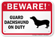 Beware! Guard Dachshund On Duty Guard Dog Sign