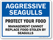 Aggressive Seagulls, Do Not Feed Them Sign