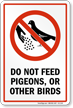 Dont Feed Pigeons or Other Birds Sign