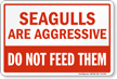 Seagulls Are Aggressive, Dont Feed Them Sign