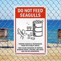 Feeding Seagulls Signs